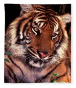 Bengal Tiger In Thought Fleece Blanket