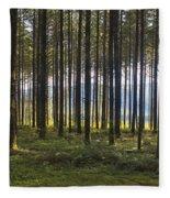 Beyond The Woods Fleece Blanket