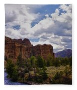 Big Horn National Forest Fleece Blanket