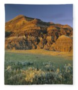 Big Muddy Badlands, Saskatchewan, Canada Fleece Blanket
