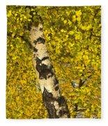 Birch Forest In Finland Fleece Blanket