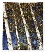 Birch Trees In Fall Fleece Blanket