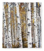 Birch Trees No.0644 Fleece Blanket