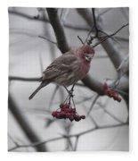 Bird And Berry 3 Fleece Blanket