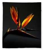 Bird Of Paradise 3 Fleece Blanket
