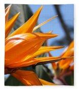 Bird Of Paradise Flowers Fleece Blanket