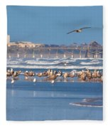 Birds Only Beach Fleece Blanket