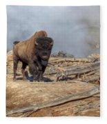 Bison And Geyser Fleece Blanket