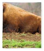 Bison At Rest Fleece Blanket