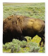 Bison Fleece Blanket