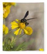Bitterweed And Black Wasp Fleece Blanket