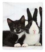 Black And Tuxedo Kittens With Dutch Fleece Blanket