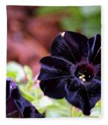 Black And Velvety Fleece Blanket