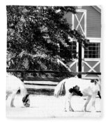 Black And White Clydesdale Grazing Fleece Blanket