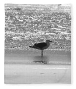 Black And White Gull Fleece Blanket