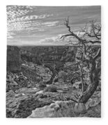 Black And White Image Of Tree Fleece Blanket
