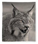Black And White Lynx Fleece Blanket