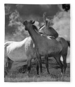 Black And White Photograph Of Montana Horses Fleece Blanket