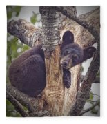 Black Bear Cub No 3224 Fleece Blanket