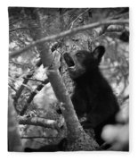Black Bear Cub Fleece Blanket