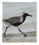Black Bellied Plover Fleece Blanket