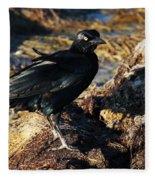 Black Bird With Yellow Eyes Fleece Blanket