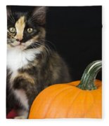 Black Calico Kitten With Pumpkin Fleece Blanket