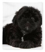 Black Cockerpoo Puppy Fleece Blanket