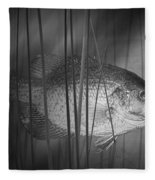 Black Crappie Or Speckled Bass Among The Reeds Fleece Blanket