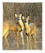 Black Ear Deer Fleece Blanket