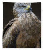 Black Kite 4 Fleece Blanket