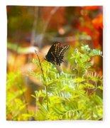 Black Swallow Tail Butterfly In Autumn Colors Fleece Blanket