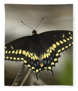 Black Swallowtail Din103 Fleece Blanket