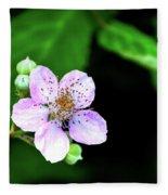 Blackberry Bloom Fleece Blanket