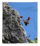 Blackberry On The Rock Top. Square Format Fleece Blanket