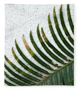 Bladed Leaf Against Stucco Wall Fleece Blanket