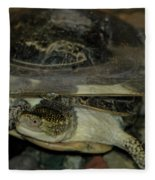Blandings Swimming Turtle Fleece Blanket