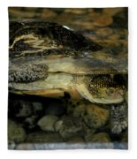 Blandings Turtle Fleece Blanket