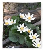 Bloodroot Fleece Blanket