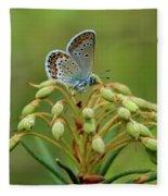 Blue 3 Fleece Blanket