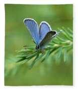 Blue 5 Fleece Blanket