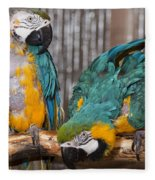 Blue And Gold Macaw Pair Fleece Blanket