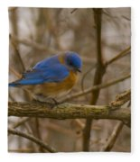 Blue Bird Perched On Willow Fleece Blanket