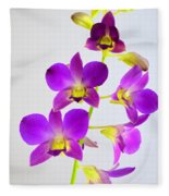 Blue Charm X Aridang Blue Orchid - 1 Fleece Blanket