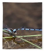 Blue Damsel Fleece Blanket