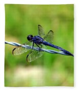 Blue Dragonfly On Barb Wire Fleece Blanket
