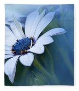 Blue Eyed African Daisy Fleece Blanket