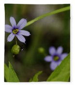 Blue Eyed Grass Fleece Blanket