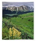 Blue Grouse Pass, Willmore Wilderness Fleece Blanket