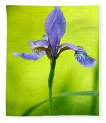 Blue Japanese Iris Fleece Blanket